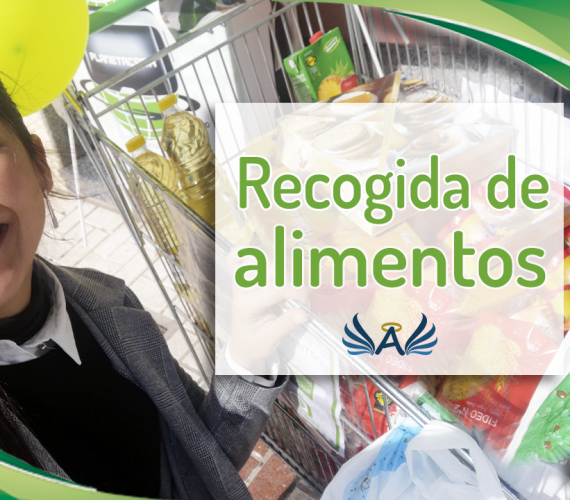 iniciativa solidaria planetacasa Recogida de Alimentos angeles de la noche malaga